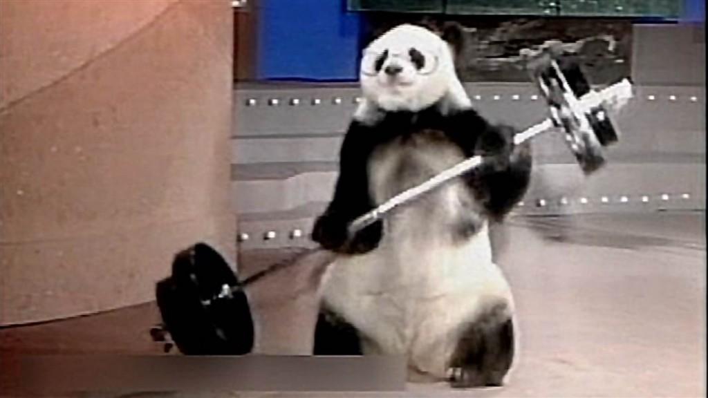 panda weight
